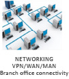 Networking VPN/WAN/MAN Branch Office Connectivity